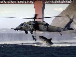 blackhelicopter_mod.jpg
