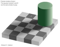checkershadow-AB.jpg